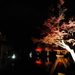 久しぶりに金沢で過ごす年末年始